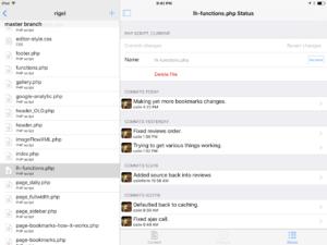 Working Copy app in fullscreen mode